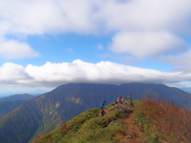 mt-shiragamon-03-large.jpg